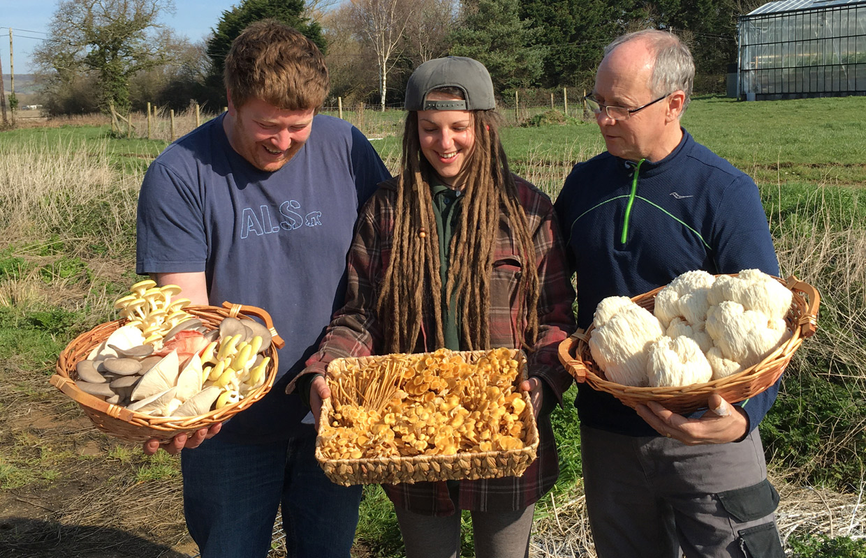 growers with artisan mushrooms
